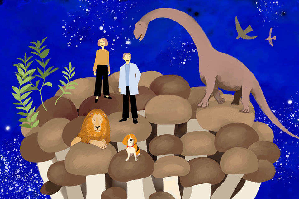 同じ祖先をもつ、人ときのこの奇跡の関係<br>第2回 「菌」がいるから、人類が誕生した