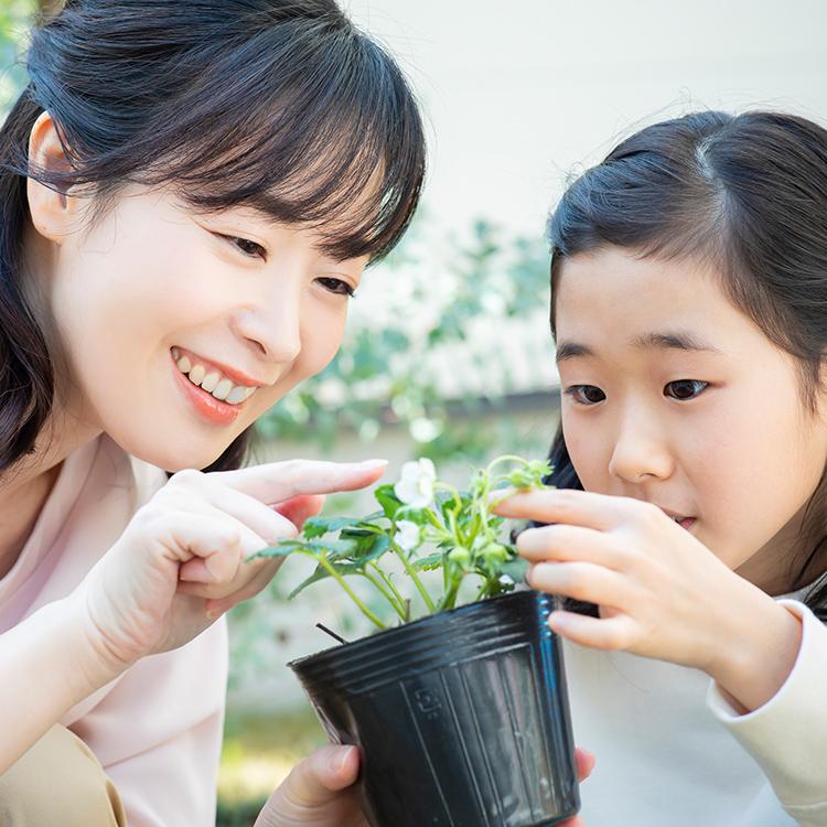 生活リズム、夏休みの宿題・・子どもの成長にもつながる『夏休みの過ごし方』