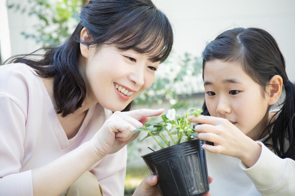 生活リズム、夏休みの宿題、体調管理・・思い出深く、子どもの成長にもつながる『夏休みの過ごし方』