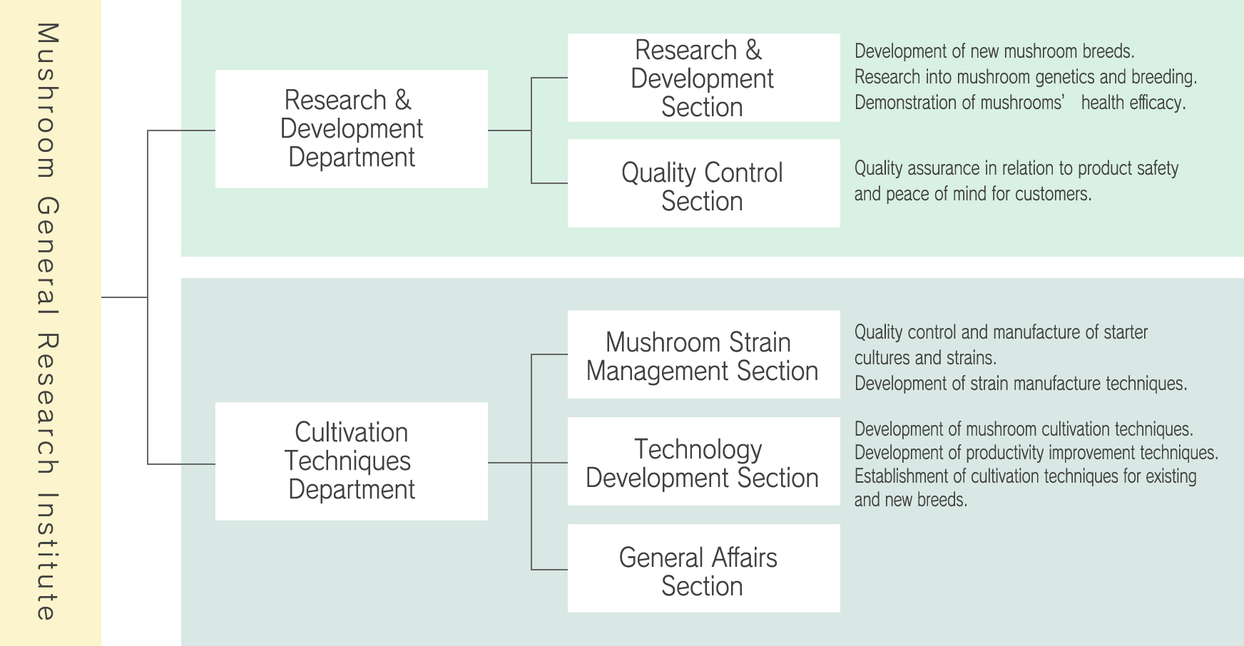 Research & Development Structure